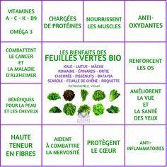 Les Bienfaits des salades et autres feuilles vertes | SALADES ET COMPAGNIE Le Monde s'Eveille Grâce à Nous Tous ♥