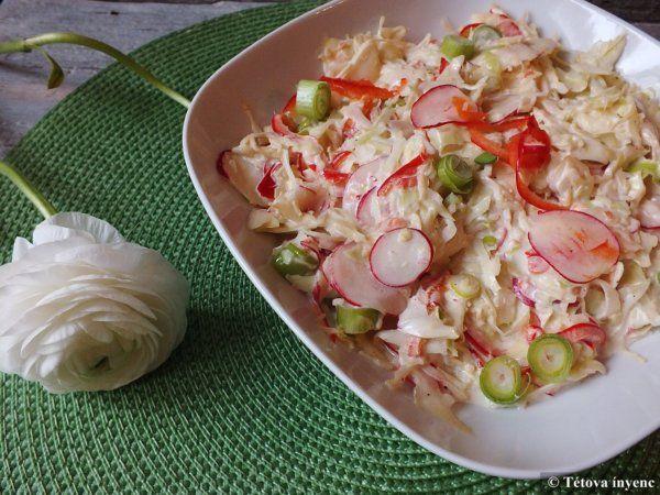 Tavaszi káposztasaláta-coleslaw – Tétova ínyenc
