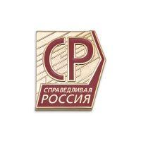 """Изготовление значков на заказ – Значки """"Справедливая Россия"""""""
