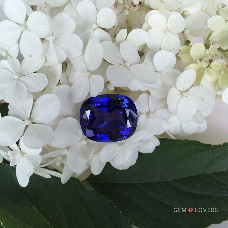 Это камень, вызывающий восхищение! Лучший #танзанит синего цвета в нашей коллекции, с единственного в мире месторождения в Танзании.  Масса камня составляет более 25 карат, при высокой чистоте. Густой синий цвет делает этот образец ювелирного танзанита похожим на природный сапфир оттенка royal blue, в переводе «королевский синий».
