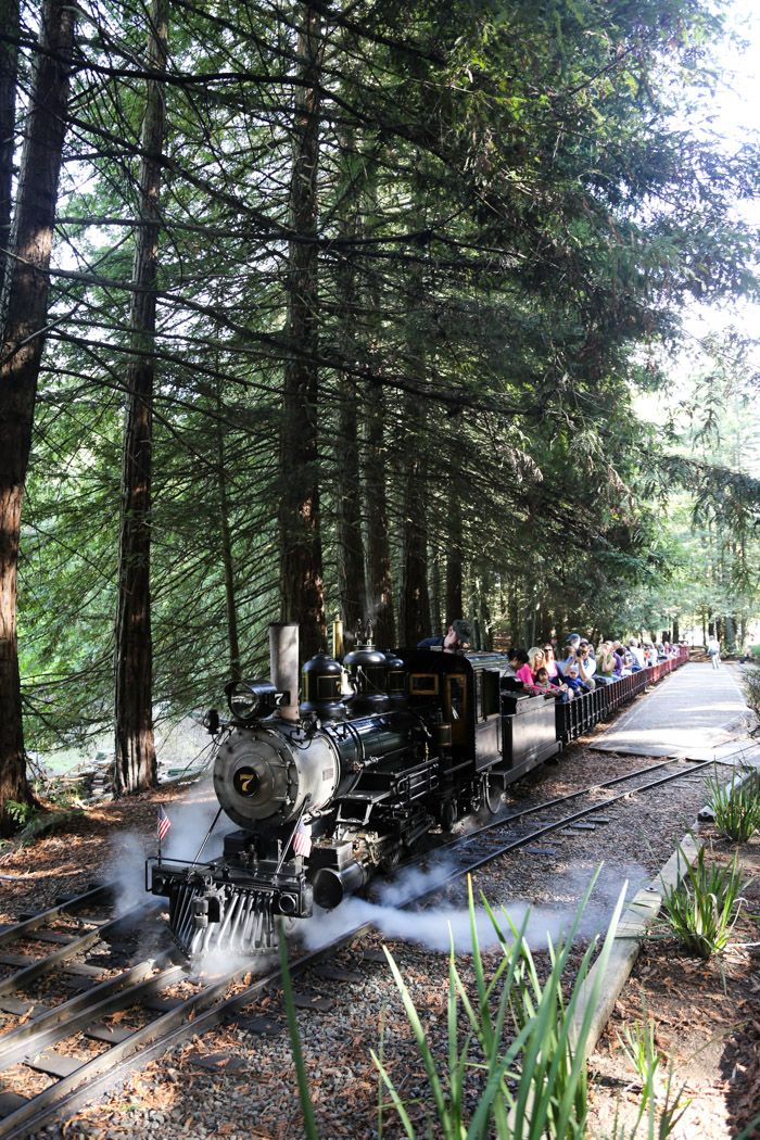 Berkeley with Kids: Ride a Steam train in Tilden Park & other top picks - Hither and Thither