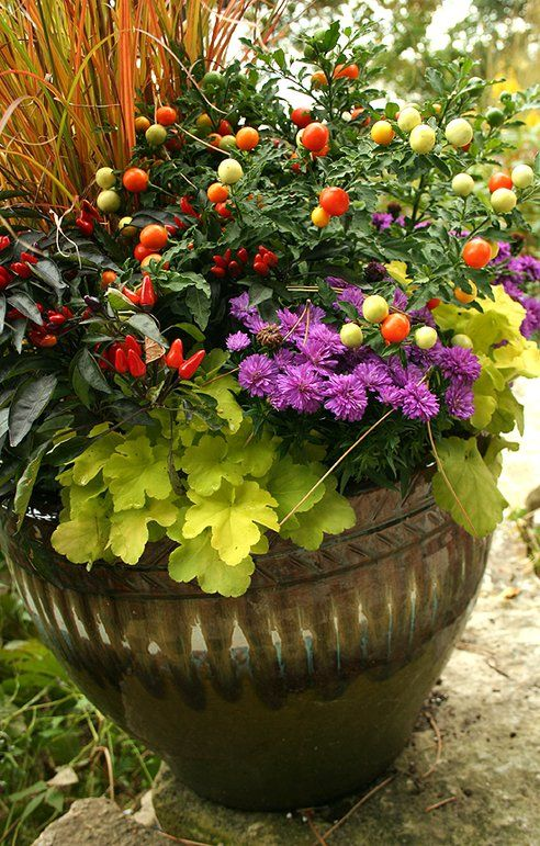 Fall Container Garden Plant List: 1. Kale; 2. Ornamental peppers; 3. Pansies; 4. Violas; 5. Cabbage; 6. Chrysanthemums; 7. Heucheras; 8. Ornamental grasses; 10. Ivy; 11. Rudbekia; 12. Celosia; 13. Sedums