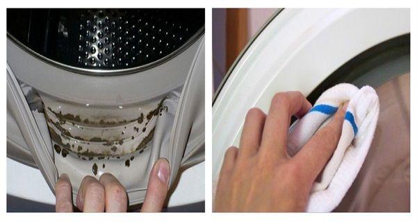 Senki sem tudja, hogy mérgező penész bújik meg a mosógépben! Így szabadulhatsz…