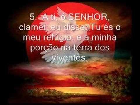 Adailce Oliveira shared a video