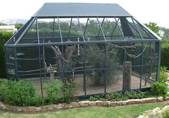Large Outdoor Canary Aviaries Large Outdoor Bird Aviaries