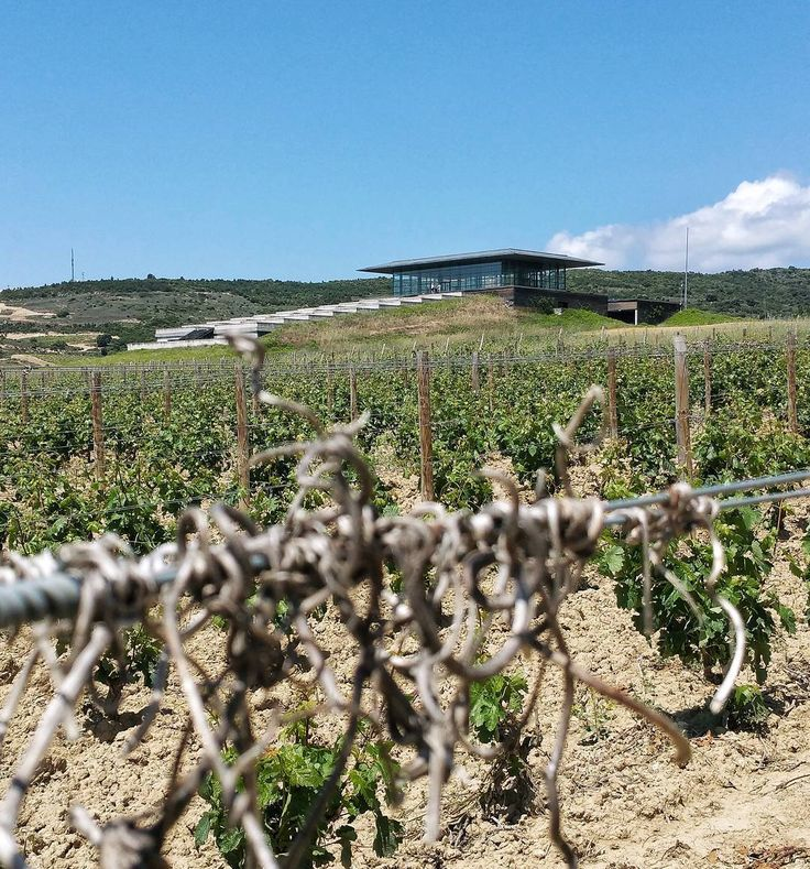 La arquitectura de bodegas juega un importante papel en el enoturismo de Rioja#tourism #winetours #travel #wine #winelover #turismo #enoturismo #experience #winetastelovers #riojawine #gastronomía #visitSpain #vino #viaje #tapas #winetasting #instariojawine #gastronomy #instawinetours #winecountry #wineries #worldplaces #winetrip #winetravel #viajar #grapevines #winetourism #winetourist #lp