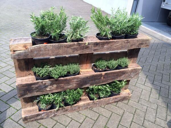 Oltre 25 fantastiche idee su fioriere da giardino su - Giardino pallet ...