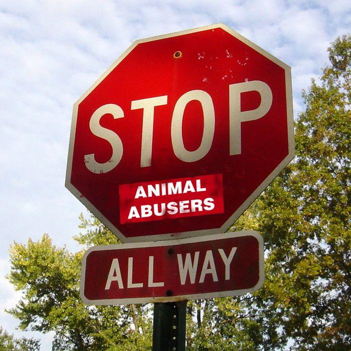 STOP Animal Abusers!