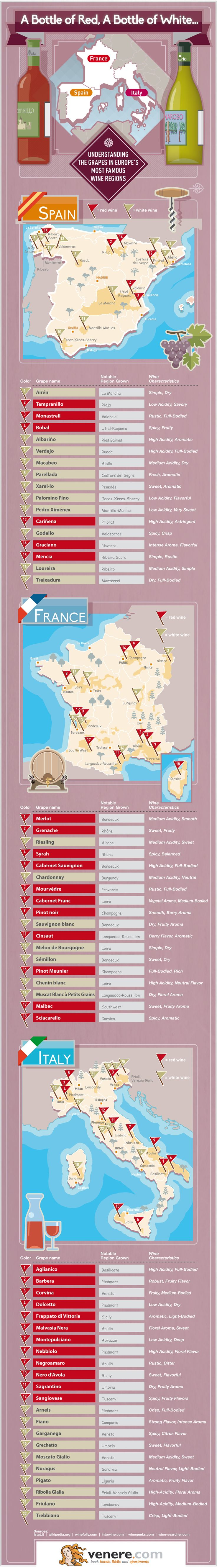 Understanding the grapes in europe´s most famous wine regions #wine #wineoclock #winetime