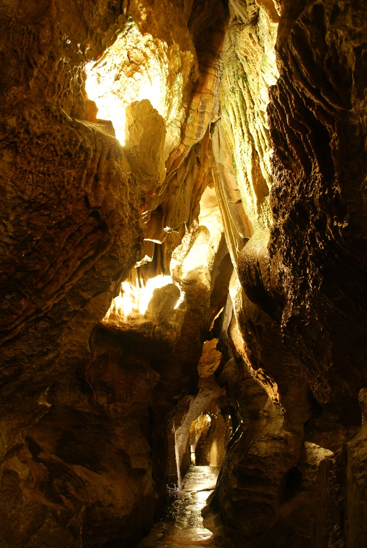 Linville Caverns, limestone caverns deeply imbedded in Humpback Mountain in northern McDowell County, NC, are the only show caverns in North Carolina! Visit Fort Bragg Leisure Travel Services for information. http://www.fortbraggmwr.com/recreation/leisure-travel-services/