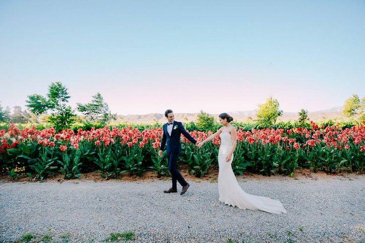 Sam & Jamie - Nov brides at Bon Cap, Robertson South Africa