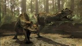 Ceratosaurus lived during the late jurassic around 165 million years ago. It lived in the silver age of the dinosaurs. With some dangerous animals and some dangerous prey ceratosaurus lived in a tough time. It lived alongside it's rival allosaurus and stegosaurus.