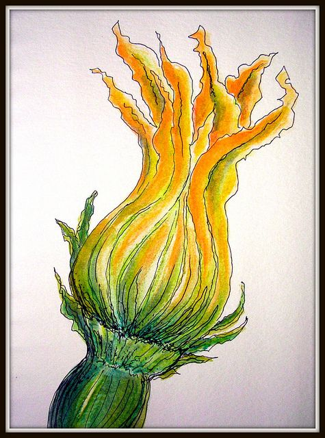 17 Best images about Art - Watercolor & Colored Pencils on ...