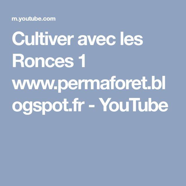 Cultiver avec les Ronces 1 www.permaforet.blogspot.fr - YouTube