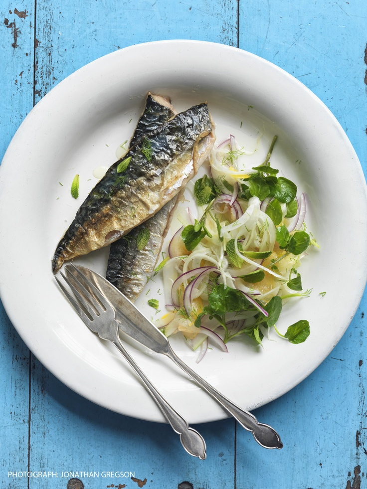 roasted mackerel with fennel, red onion and apricot salad by Mitch Tonks