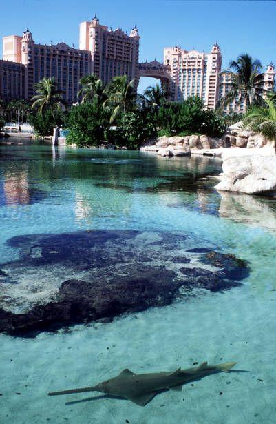 Las Bahamas (hotel Atlantis).