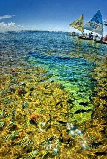 Ilha Grande, Brazil.
