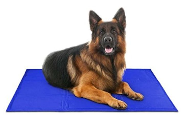 Pet Dog Self Cooling Mat Pad For Kennels Crates And Beds 31 X 37 Arf Pets In 2020 Dog Bed Mat Dog Cooling Mat