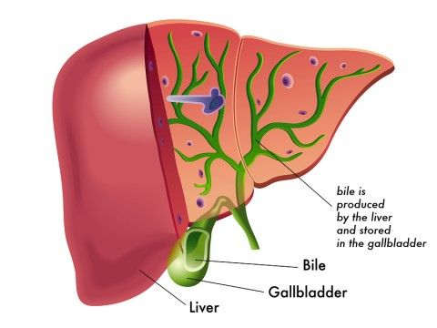 The Gallbladder Diet and Natural Treatment  http://www.draxe.com #holistic #healthy #easy