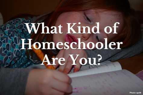 """Here's a fun quiz: """"What kind of homeschooler are you?"""" (My results were fairly accurate, but I don't think the quiz makers have homeschooled high schoolers. There were no questions about that at all.)"""