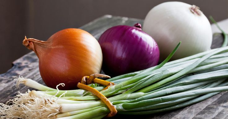 good explanations of which foods have Prebiotics and probiotics