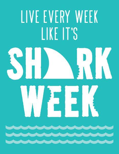 Best 25 Shark Week Ideas On Pinterest Jaws 4 Shark Snacks And Sharknado 6