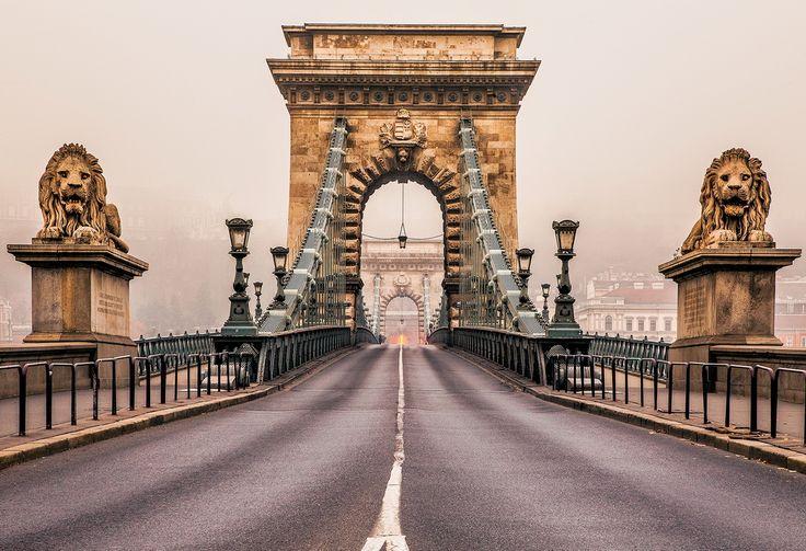 Львы на мосту Сечени Цепной мост Сечени в Будапеште