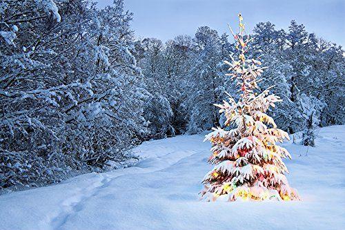 7X5ft White Photography Backdrop Glitter Christmas Tree S... https://www.amazon.co.uk/dp/B01MPY3LYE/ref=cm_sw_r_pi_dp_x_FmTeybWCA85P3