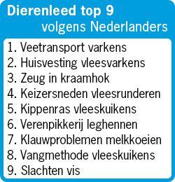 Dierenleed top 9. Nederlanders: transport varkens ergste dierenleed.