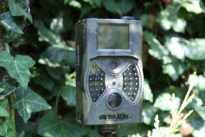 Braun Scout camera Black