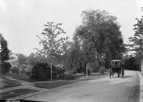 Online MIKAN no. 3318527 (1 item) Title  Driveway near Bank Street. 1911