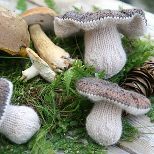 Knit Mushrooms I don;t know what you'd do with them, but I love them anyway! You can almost smell the forest floor!