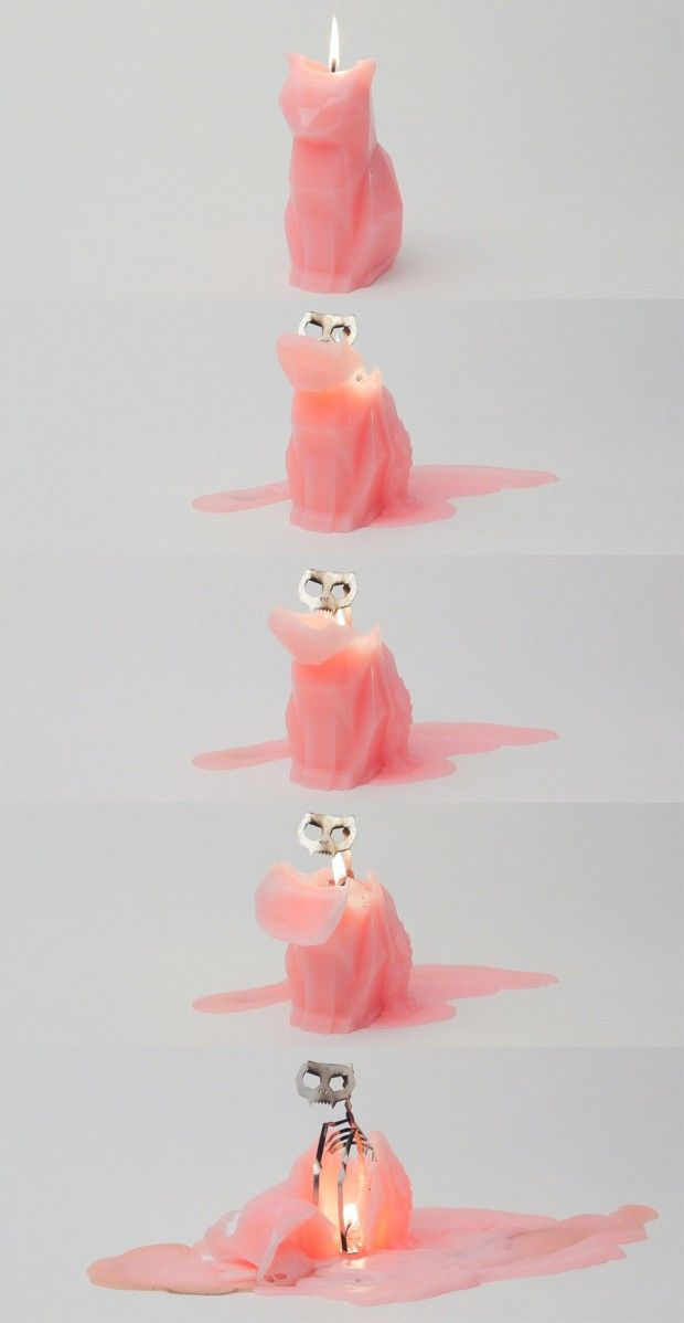 Kitty candle - this is amazing!