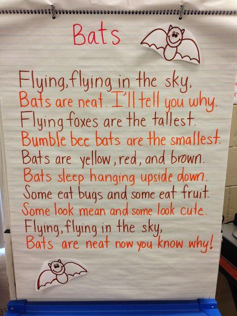 Bats Week!