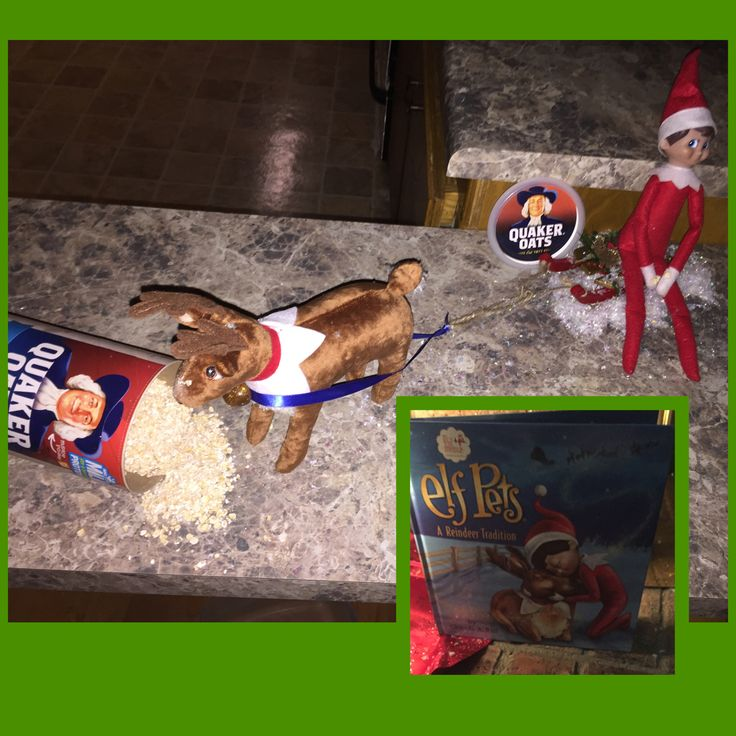 Bringing in a new Elf Pet! Tom the elf rode in on a sleigh pulled by his new friend! Left behind some magic snow & got into the oats for the reindeer when they arrived!! Day 2 ~ 2015
