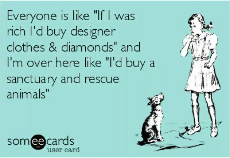 OMG!!! I so would!! I want to help animals and people.. Ya'll can have that Ferrari and designer brand nonsense!! I want to make a difference and help! I wouldn't even buy a Corvette.. That's money I can do better things with☺️