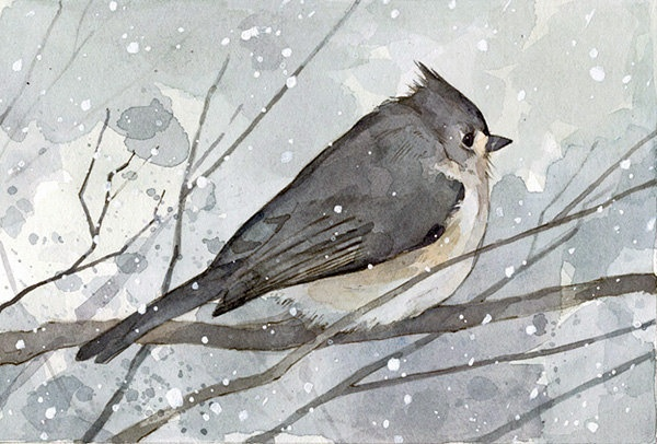 Bird Watercolor Painting - Tufted Titmouse