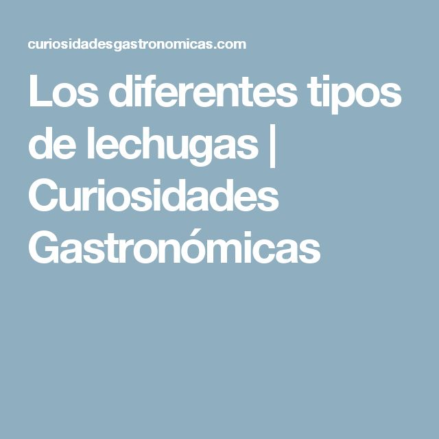 Los diferentes tipos de lechugas | Curiosidades Gastronómicas