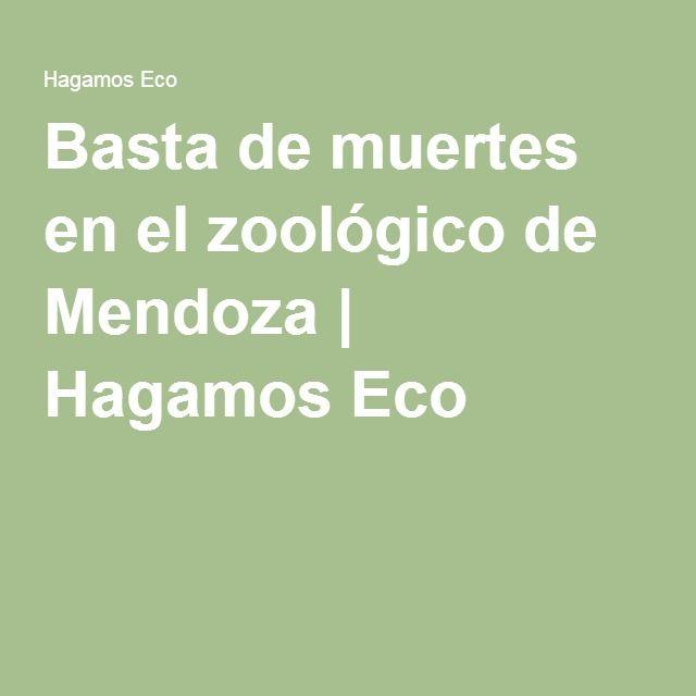 Basta de muertes en el zoológico de Mendoza   Hagamos Eco
