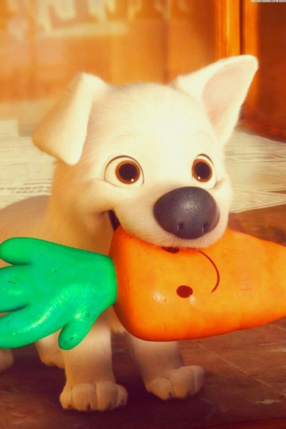 A quick quiz to test your Disney dog knowledge. I got them all right lol