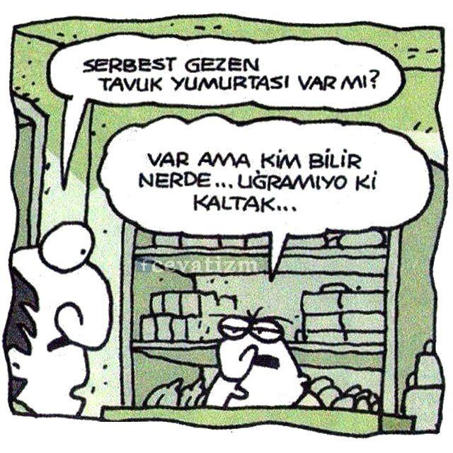 - Serbest gezen tavuk yumurtası var mı? + Var ama kim bilir nerede... Uğramıyo ki kaltak... #karikatür #mizah #matrak #komik #espri #şaka #gırgır #komiksözler