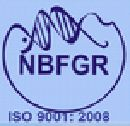 NBFGR Recruitment RA And SRF Notification Govt Jobs Lucknow 2014. Welcome to jobscloud.co.in, it delineate the NBFGR Recruitment 2014 on www.nbfgr.res.in. NBFGR has broadcasted a new notification for the recruitment of RA And SRF job vacancies in Lucknow.