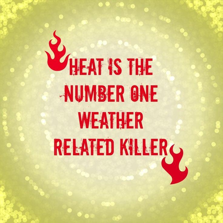 19 Best Heat Stroke Images On Pinterest