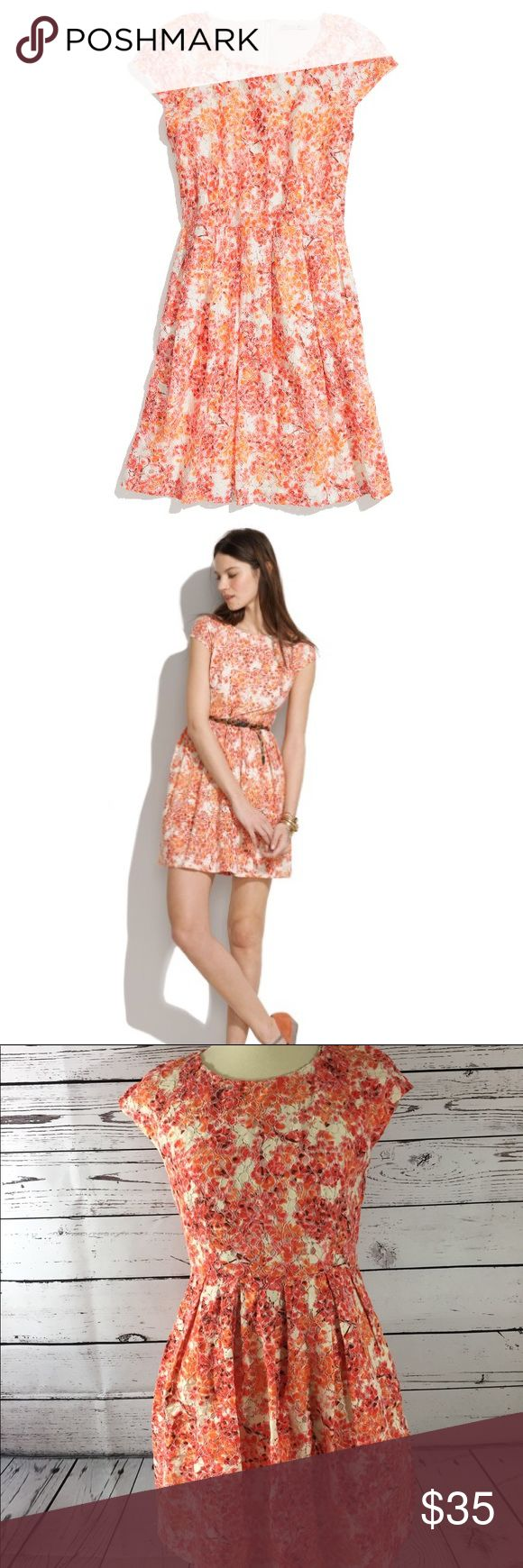 Madewell Women's Floral Painted Cotton Blend 6 Madewell 1937 Women's Floral Laceboom Cotton Blend Dress Size 6  Type:Dress Style:Floral laceboom Brand:Madewell Material:Cotton 61% nylon 39% Color: orange,white Conditions:Used-no rips or no pilling Stock Number:0002   Please compare measurement to own favorite clothing to help avoid having a return. Measurements are approximate:  Waist:31 Hips:34 Total length:31   Please look at the pictures for the details,and contact me for any questions…