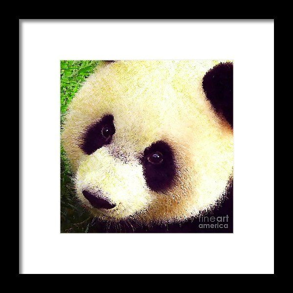 Panda by Stacey Chiew. Image protected by copyright law.