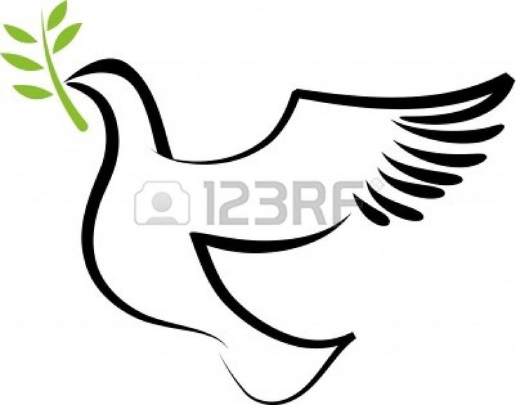 a free flying white dove with olive branch stock vector 7977942