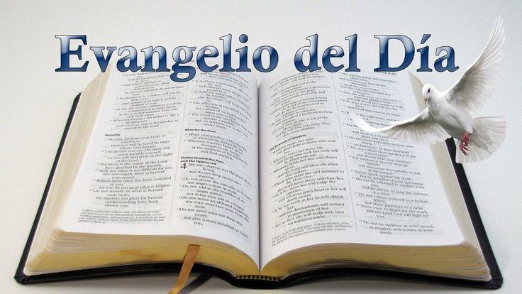 Evangelio del día (Jueves, 8 de Diciembre 2016) Mateo Capitulo 13