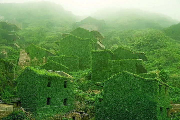 In the mouth of the Yangtze River off the eastern coast of China, a small island holds a secret haven lost to the forces of time and nature—an abandoned fishing village swallowed by dense layers of ivy slowly creeping over every brick and path. Houtou Wan Village is located on Gouqi Island, which belongs to a group of 394 islands known as the Shengsi Islands in the Zhoushan Archipelago. It's one of many examples of small villages in China that have become ghost towns due to urbanization…