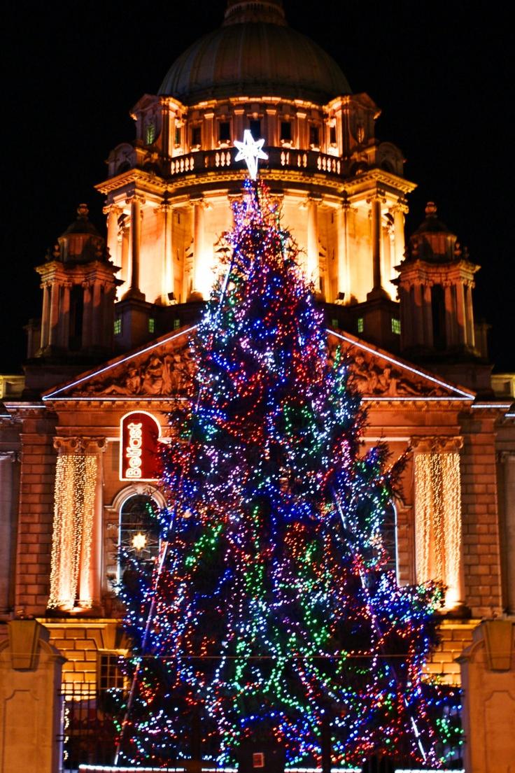 christmas trees Bing Images Live christmas trees
