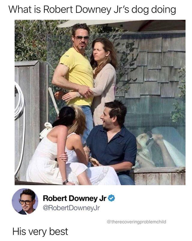Sam On Instagram You Re Doing Great Sweaty Funny Af Memes Funny Cartoon Memes Robert Downey Jr